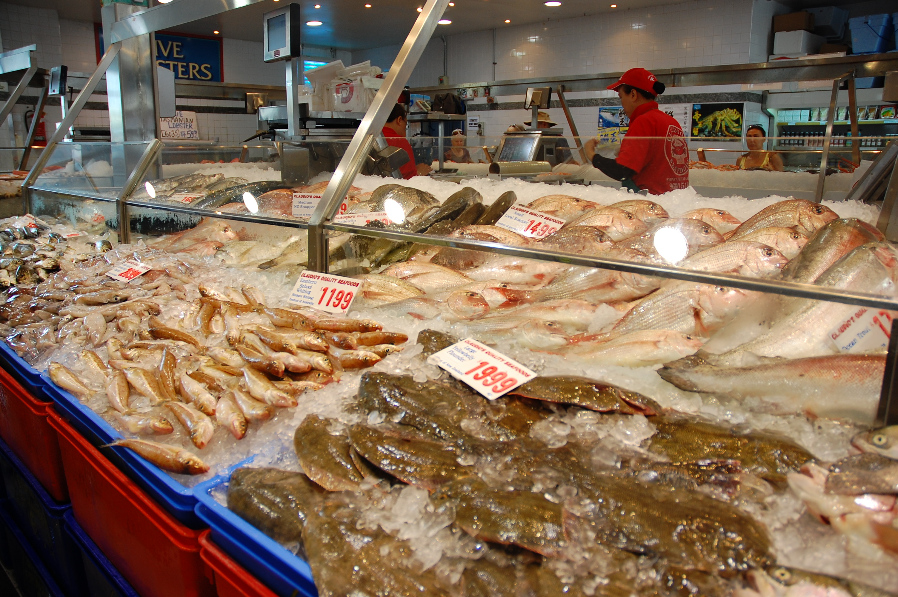 Sydney fish market yes to cooking yes to cooking for Fish market prices